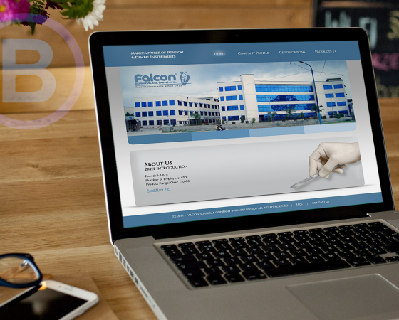 FALCON SURGICAL CO. Website design and development