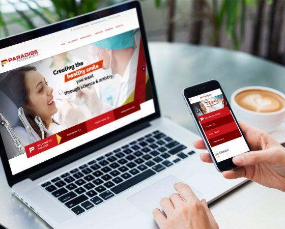 Paradise Instruments Website design and development